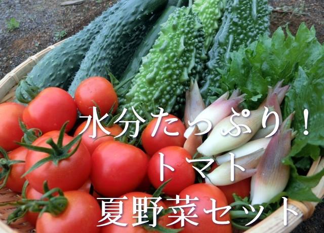 トマトと夏野菜セット