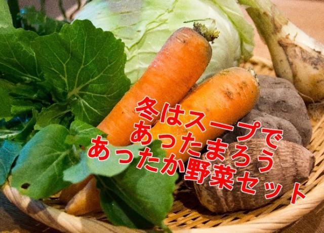 収穫したばかりの野菜