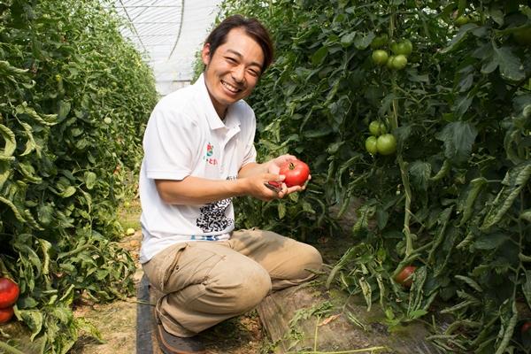 鳥取のトマト農家さんも