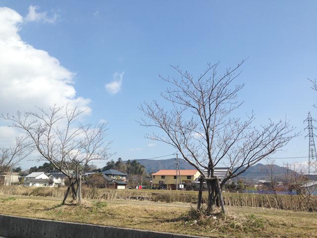 よく晴れた松江