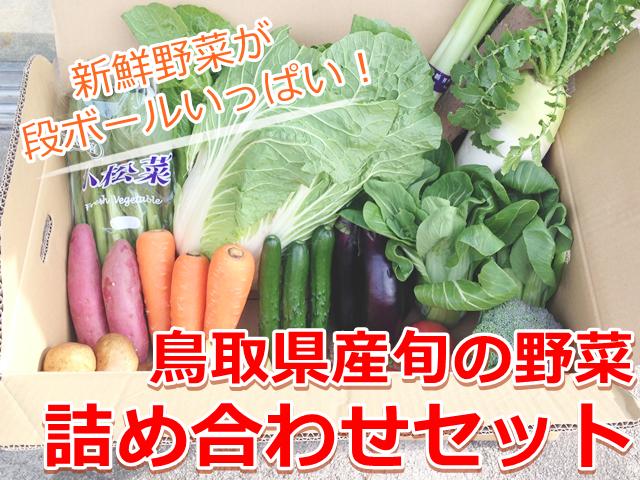鳥取県産の新鮮な野菜通販セット