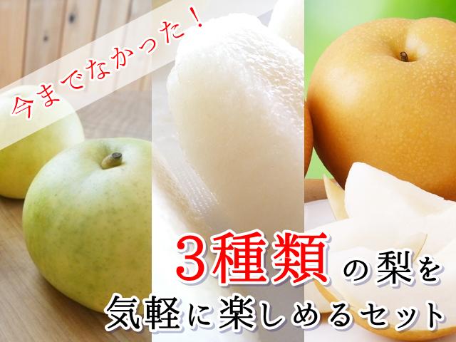 3種の梨の食べ比べ通販セット