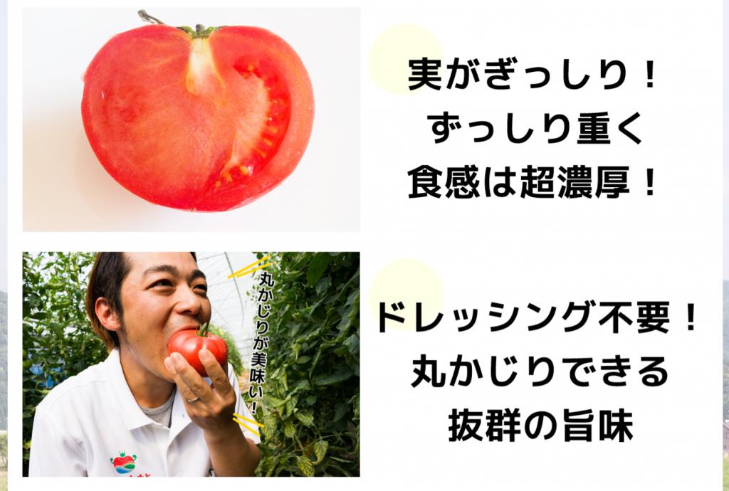 ページ上部では商品の特徴を簡潔に説明