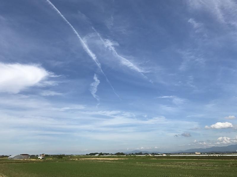 晴天の越後平野