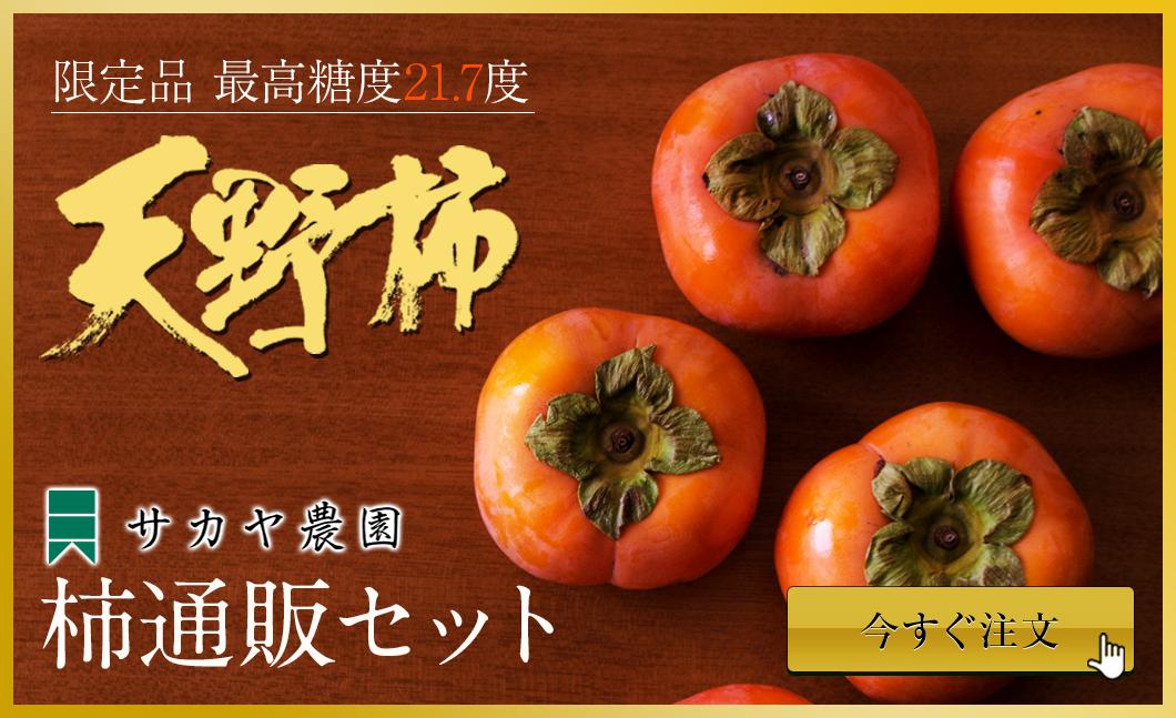 天野柿通販セット商品ページへ