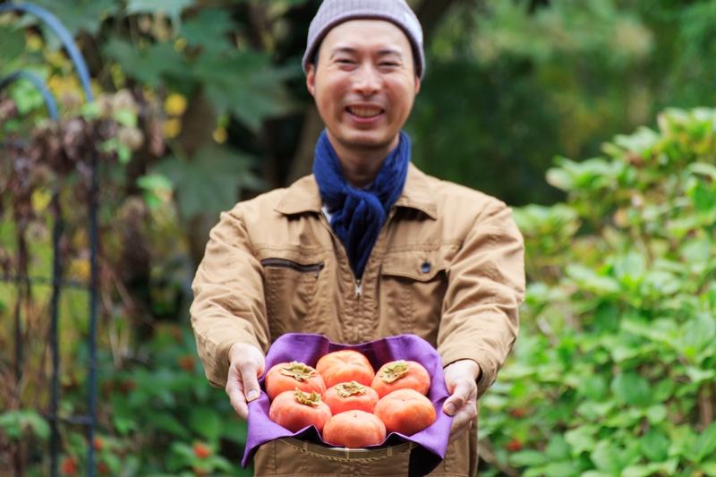 美味しい天野柿を届けたい!