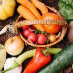 ネット販売に向いている作物ってなんですか? 売れる作物を見つける5つの視点【未来の農家さんからのご質問】